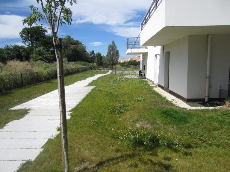 exemple de collecte des eaux par des espaces verts en creux