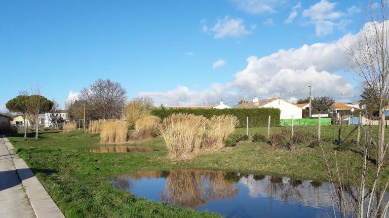 exemple de gestion des eaux pluviales valorisant le cadre de vie